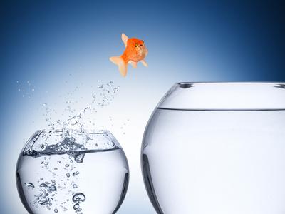 Sind Aktien überbewertet?